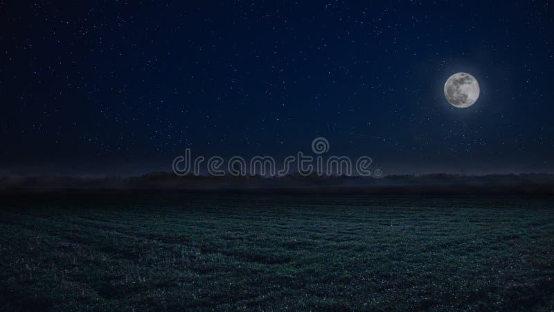 Księżyc w pełni nocy krajobraz z mgłą w tle zdjęcie royalty free