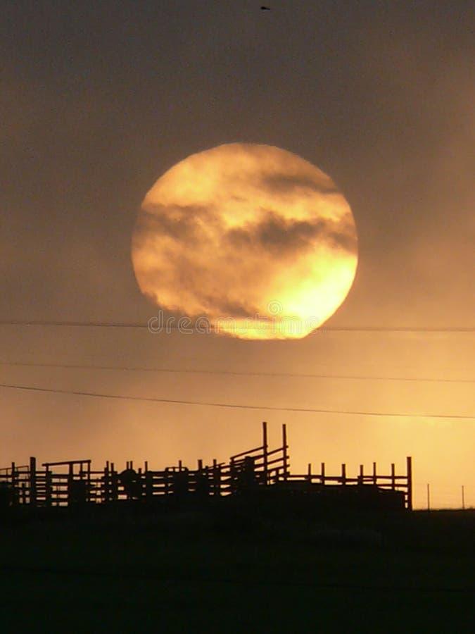 Księżyc w pełni ustawia nad sylwetkowym bydła corral zdjęcie royalty free