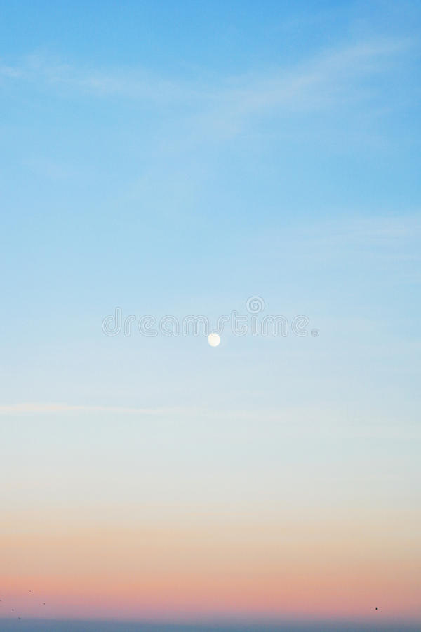 Księżyc w pełni w ranku niebie obrazy royalty free