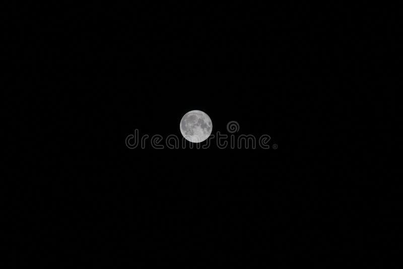Księżyc w pełni w zmroku obraz stock