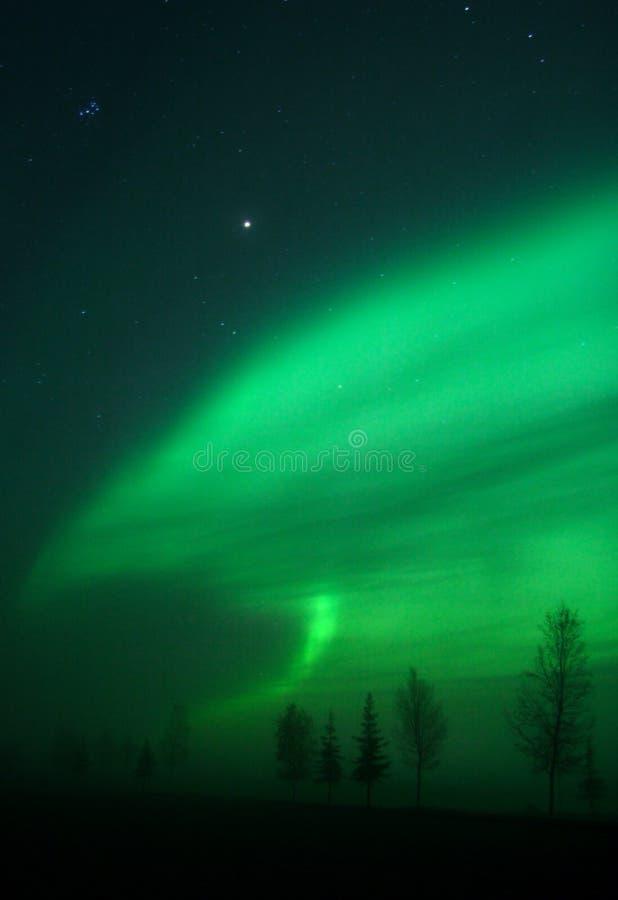 kształt aurora. obrazy stock