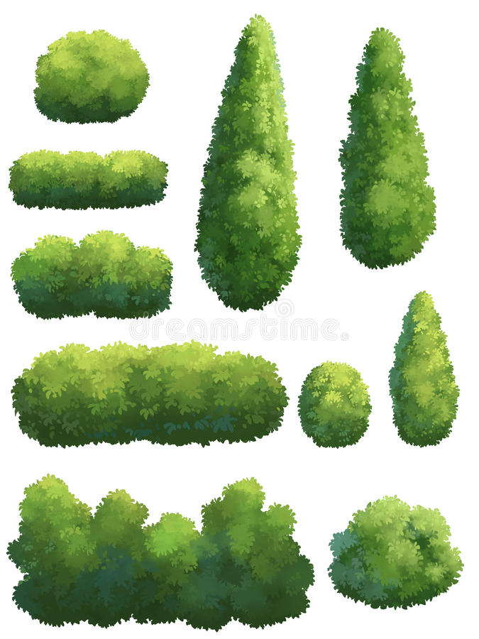 Kształt drzewo w ogródzie royalty ilustracja
