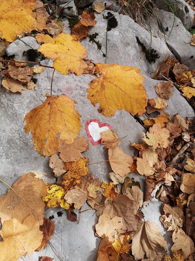 Kształt serca Znak górski i x27;s zdjęcia stock