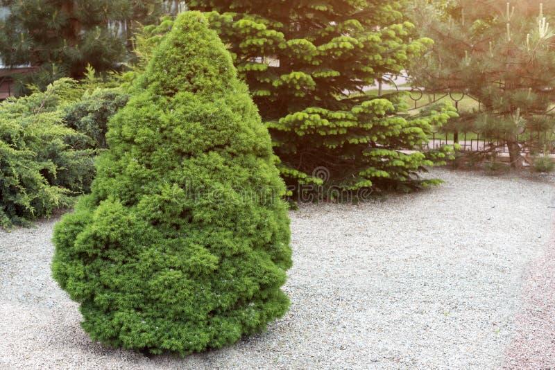 Kształtujący teren Formalny Ogród miasto jak park Ornamentacyjny parka ogródu projekt obrazy royalty free
