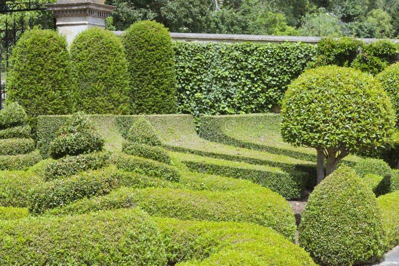 Kształtujący teren ogród z topiary krzakami i drzewami zdjęcie royalty free