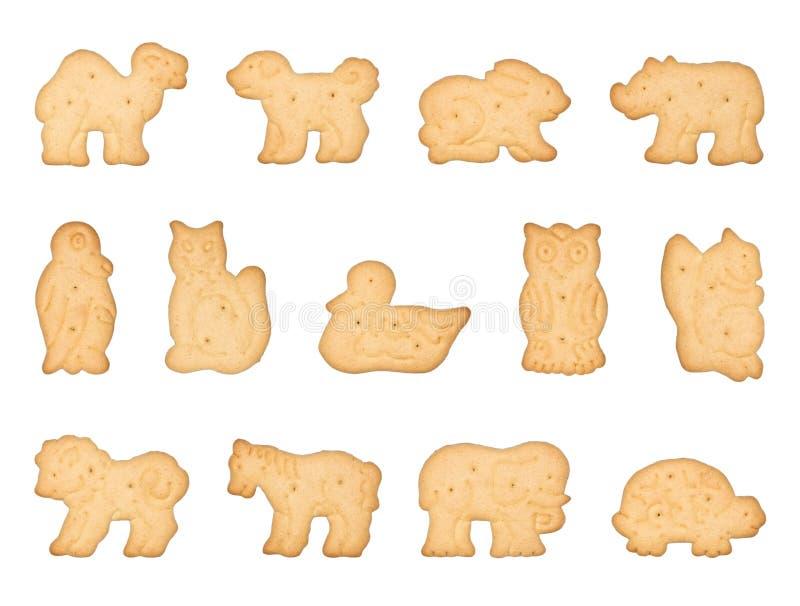 kształtujący zwierzęcy ciastka fotografia stock