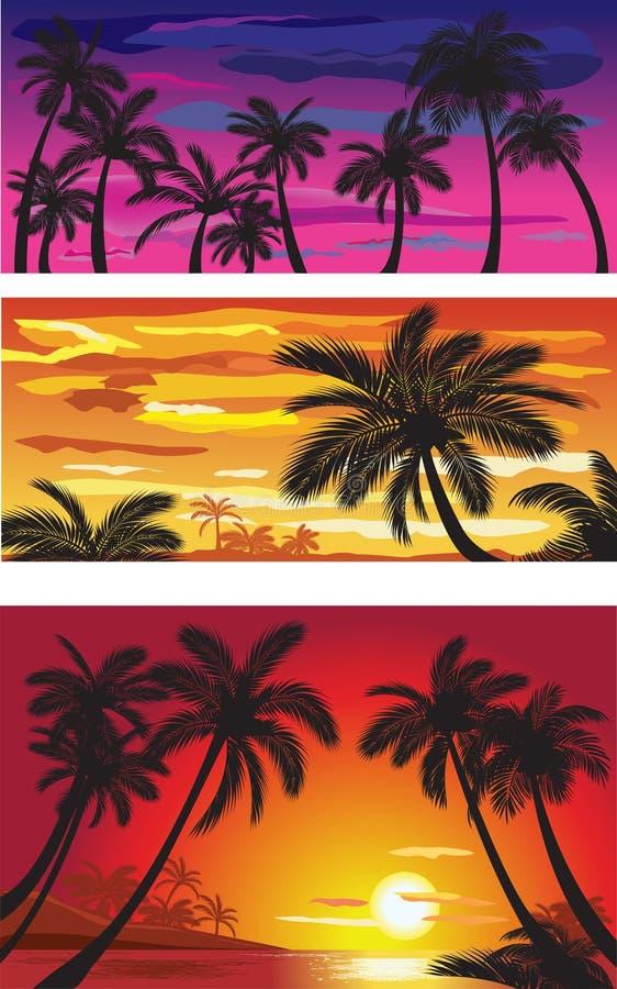 kształtuje teren palma zmierzch ilustracja wektor