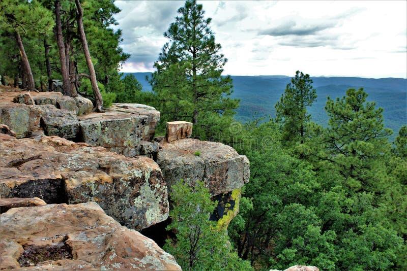 Kształtuje teren przy drewien Jar jeziorem, Coconino okręg administracyjny, Arizona, Stany Zjednoczone zdjęcie stock