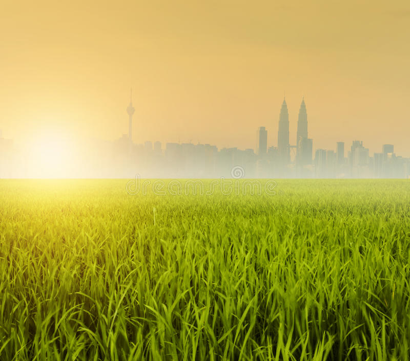 Kuala Lumpur över risfältfält arkivfoto