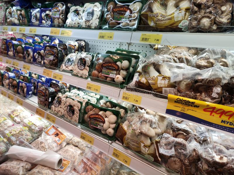 Selected focused of  various types of mushrooms have been packaged well and exhibited for sale. royalty free stock photography