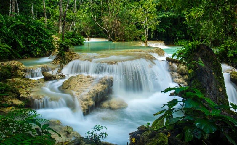 Kuang Si Waterfall en el prabang de Luang, LAOS fotos de archivo libres de regalías