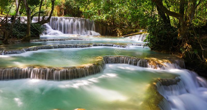 Waterfall in the forest royalty free stock photography