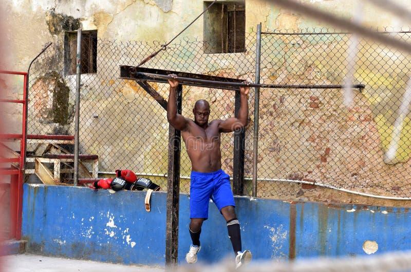Kubańscy boksery w Hawańskim obrazy stock