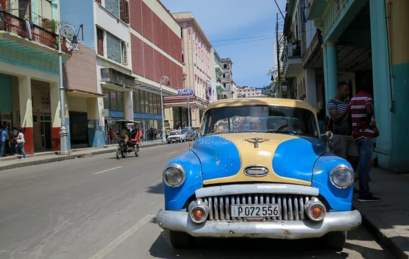 Kubański Klasyczny Hawański zdjęcie stock