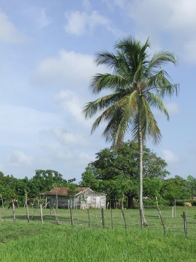 kubański kraju typowy dom obraz stock