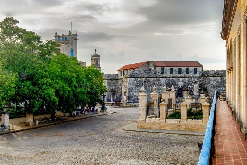 Kuba-havannacigarr fyrkant av armar royaltyfri bild