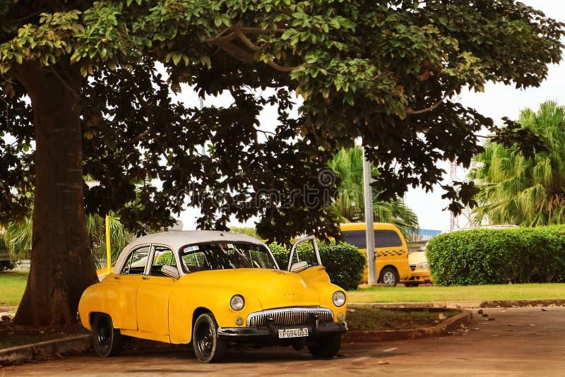 Kuba havannacigarr - Januari 16, 2019: Gammal gul taxibil i den gamla staden av havannacigarren mot det tropiska trädet royaltyfria foton