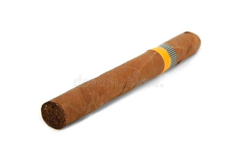 Kubanische große Zigarre stockfotografie