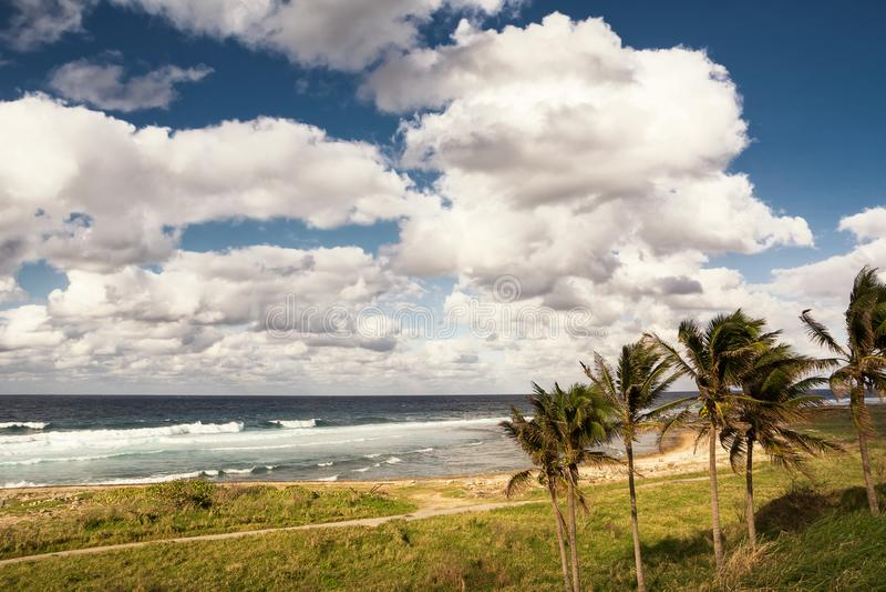 Kubanische Küste mit Ansicht des Ozeans und der Palmen nahe Havana stockfotografie