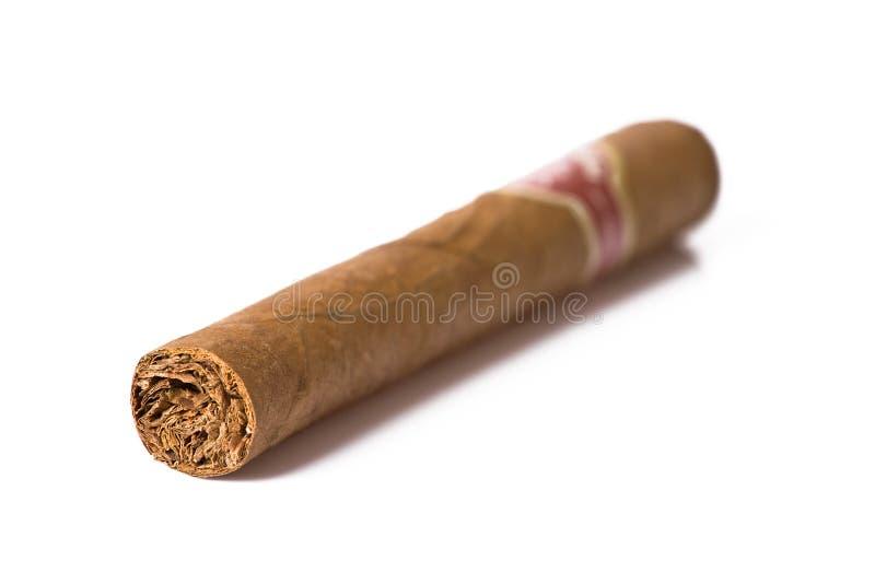 Kubanische Zigarre lizenzfreie stockbilder