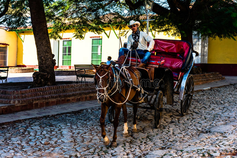 Kubansk cowboy royaltyfria bilder