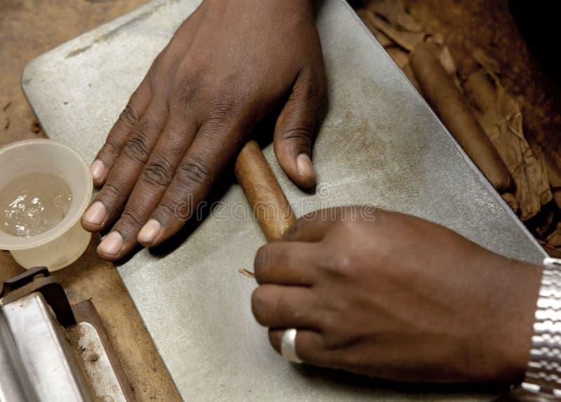 Kubansk rullande cigarrhand arkivbild