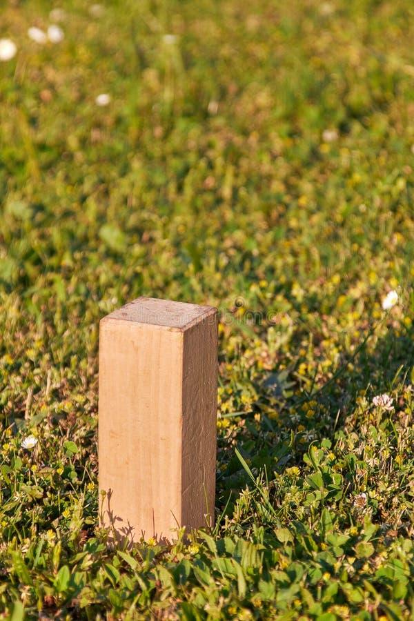 Kubb, ξύλινο κεραμίδι στο πράσινο λιβάδι στοκ φωτογραφία με δικαίωμα ελεύθερης χρήσης