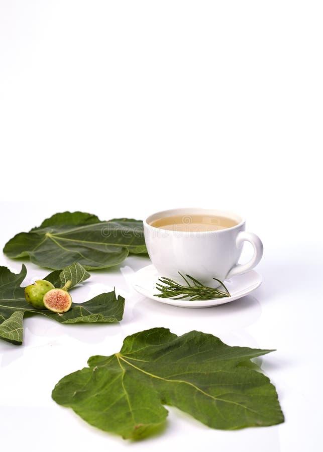 Kubek figi liścia herbata Z rozmarynami zdjęcia stock
