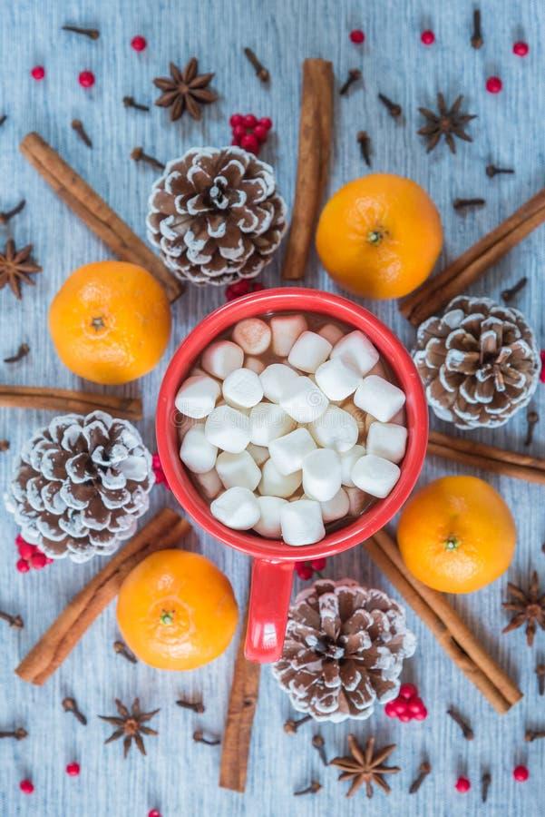 Kubek gorący kakao i marshmallows otaczający cynamonowymi kijami, pomarańczami i sosna rożkami, fotografia stock