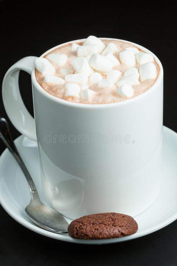 Kubek kakao z Marshmallows obrazy royalty free