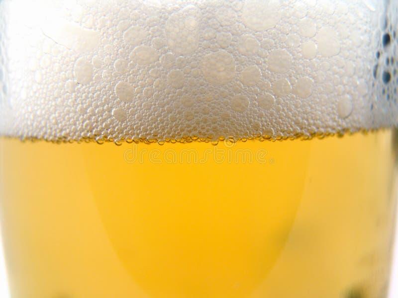 Kubek Piwa Bezpłatne Zdjęcia Stock