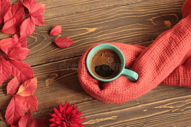 Kubek z kawą ciepłą, zawijający w szaliku na tle zdjęcie royalty free