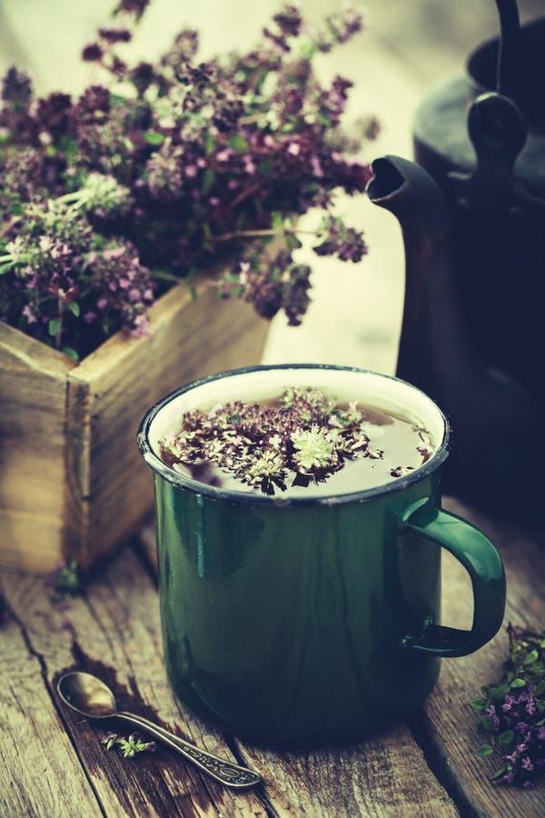 Kubek zdrowa ziołowa herbata, stary herbaciany czajnik i pudełko tymiankowi kwiaty, obraz stock