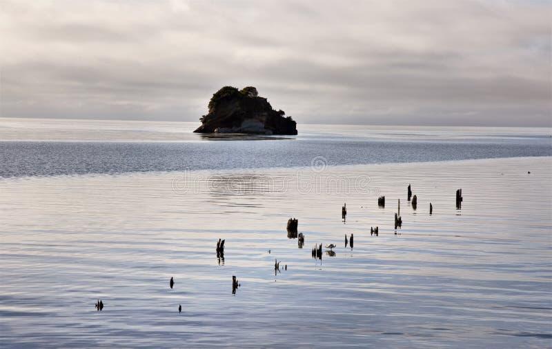 Kucbarska cieśnina Collingwood Nowa Zelandia obrazy stock