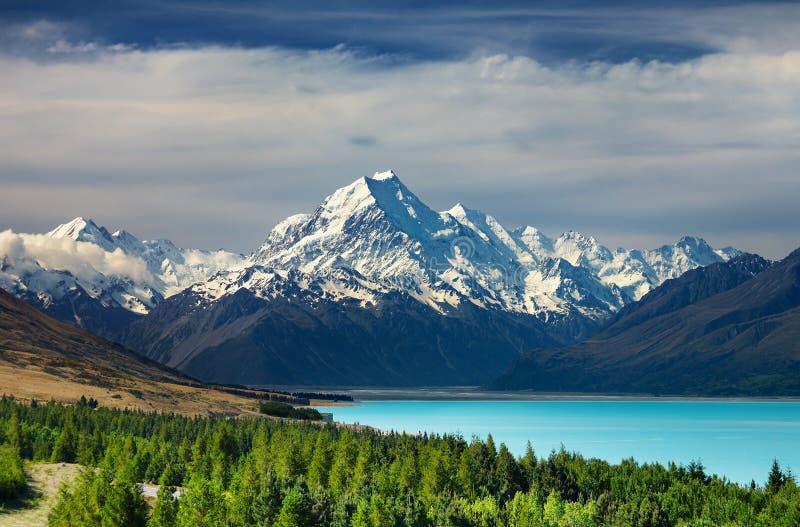 kucbarska góra nowy Zealand fotografia royalty free