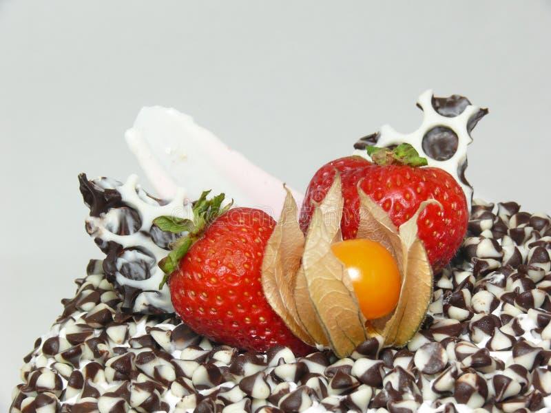 Kuchen mit Schokoladenchips und Beeren (rechte Seite) stockfotografie