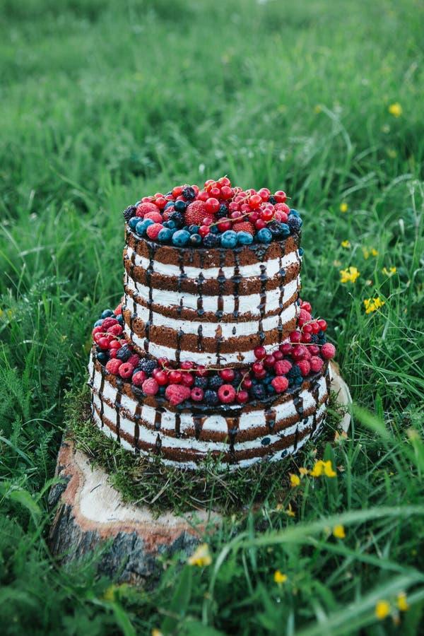 Kuchen oder Süßigkeiten für einen Geburtstag oder ein Feiertag oder eine Partei Backen Sie mit Beeren, Erdbeere, Himbeere, Blaube lizenzfreie stockfotografie