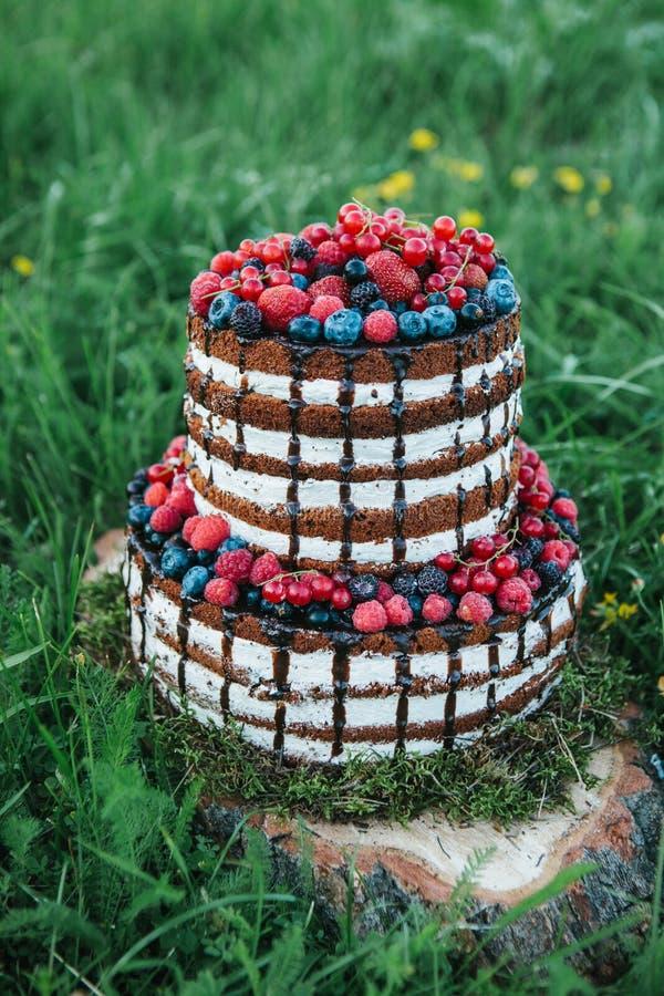 Kuchen oder Süßigkeiten für einen Geburtstag oder ein Feiertag oder eine Partei Backen Sie mit Beeren, Erdbeere, Himbeere, Blaube stockbilder