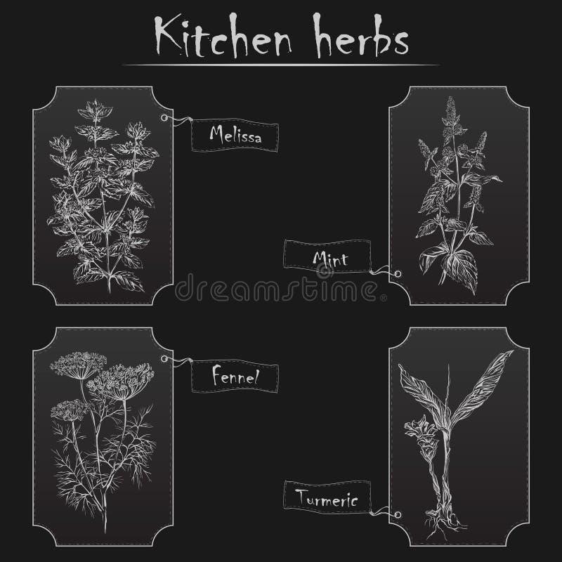 Kuchenni ziele royalty ilustracja