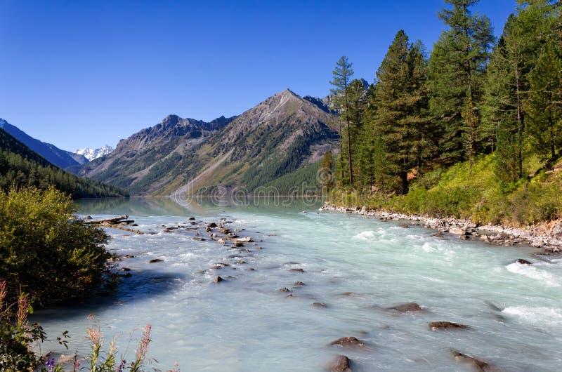 Kucherla sjö och flod i de Altai bergen, Ryssland royaltyfria bilder