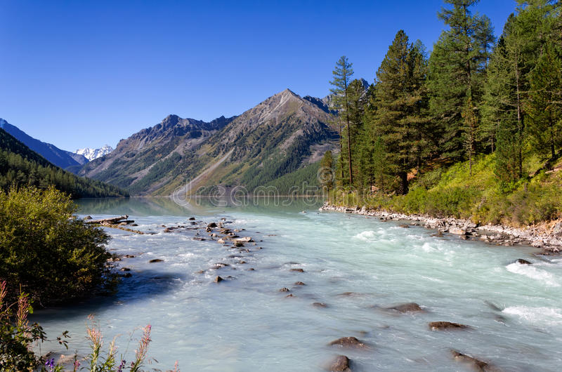 Kucherlameer en rivier in de Altai-Bergen, Rusland royalty-vrije stock afbeeldingen