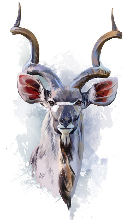 Kudu watercolor painting stock illustration