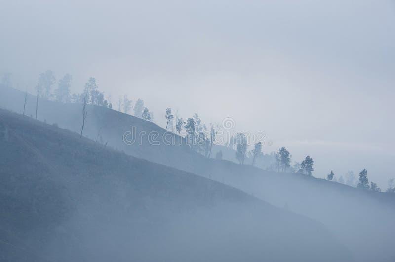 Kufmorgonlandskap i grått lynne arkivfoton
