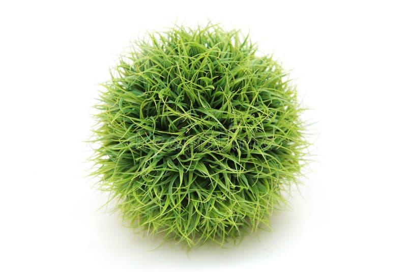 Kugel gebildet vom Gras stockfoto