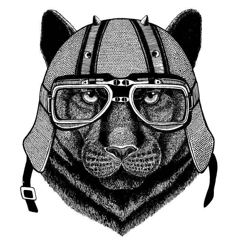 Kuguar panter, leopard, jaguar som bär en motorcykel, aero hjälm Utdragen bild för hand för tatueringen, t-skjorta, emblem, emble stock illustrationer