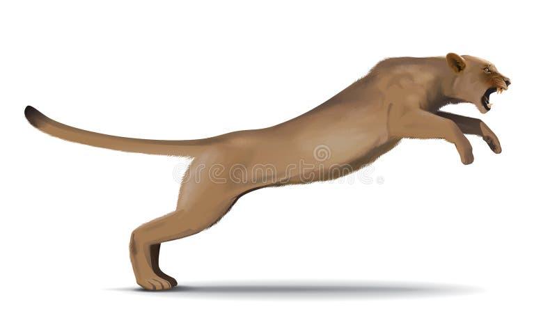 Kuguarattacker i hoppet royaltyfri illustrationer