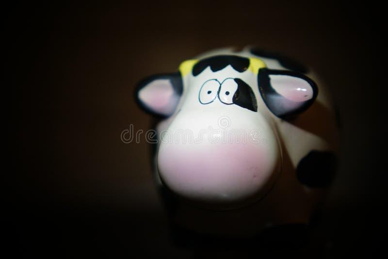 Kuh in der Dunkelheit stockbilder