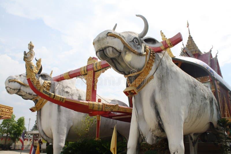 Kuh-Statue in Thailand-Tempel stockfoto