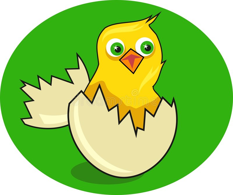 Download Kuiken vector illustratie. Illustratie bestaande uit broedsel - 44112
