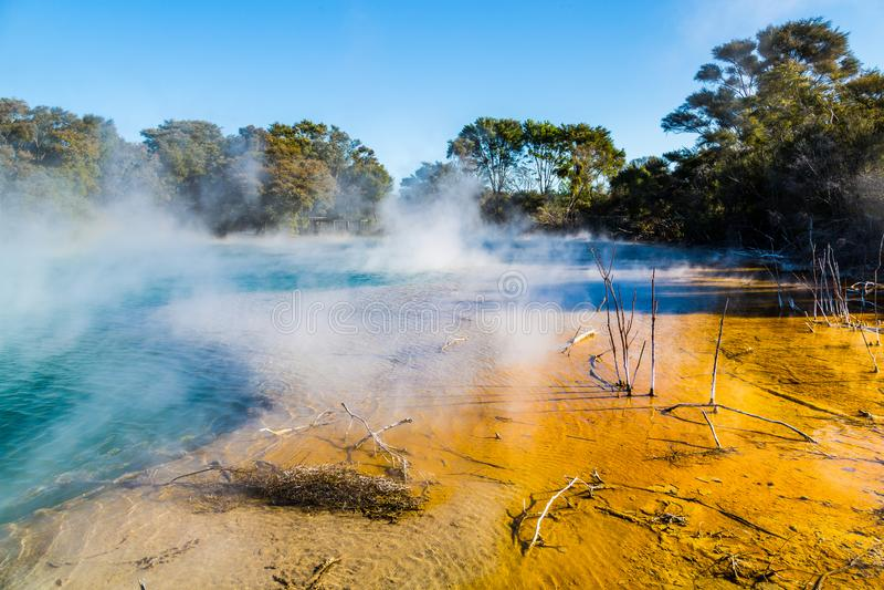 Kuirau park, Rotorua zdjęcia royalty free
